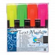 Набор маркеров текстовых «Centrum» 4 шт, 80469.