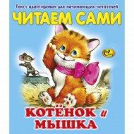 Книга «Котёнок и мышка» серия «Читаем сами».
