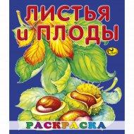 Раскраска «Листья и плоды».