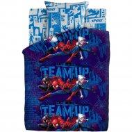 Комплект постельного белья «Человек Паук» Пауки, 70х70