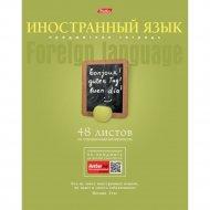 Тетрадь предметная А5ф «Иностранный язык» 48 л.