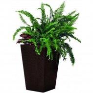 Кашпо «Keter Group» Medium Rattan Planter-jrdbrw-castorama