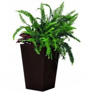 Кашпо «Keter Group» Medium Rattan Planter-jrdbrw-castorama