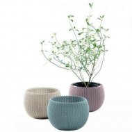 Кашпо «Keter Group» Cozies Herbs Pot-EE STD Cu