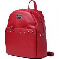 Рюкзак «Galanteya» 46716, 0с1936к45