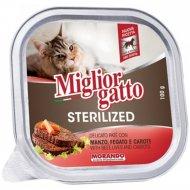 Ламистеры «Miglior» для кошек, с говядиной и морковью, 100 г.