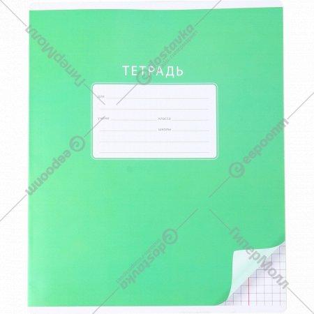 Тетрадь школьная ученическая, клетка, 12 листов.