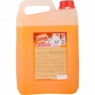 Средство для мытья посуды «Эконом» в канистрах, апельсин, 5 кг.