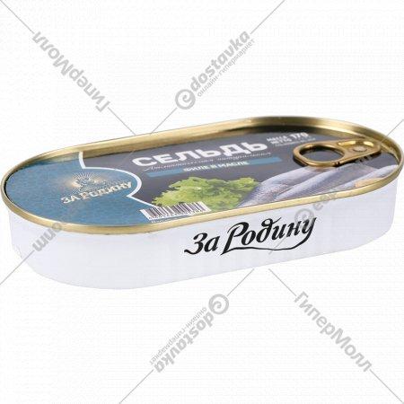 Консервы рыбные «За Родину» филе сельди в масле, 170 г