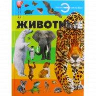 Книга отличная энциклопедия «Животные» Спектор А.А.