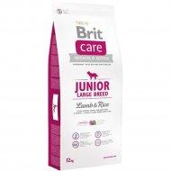 Корм для собак «Brit» Junior Large Breed, Lamb and Rice, 132703, 12 кг