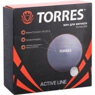 Фитбол «Torres» AL100175, серебристый