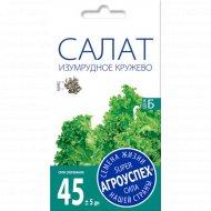 Салат «Изумрудное кружево» 0.5 г.