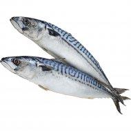 Скумбрия атлантическая «РыбаХит» мороженая, 1 кг