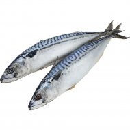 Скумбрия атлантическая «РыбаХит» мороженая, 1 кг, фасовка 0.9-1.2 кг