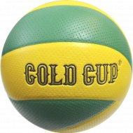 Мяч волейбольный «Gold Cup».