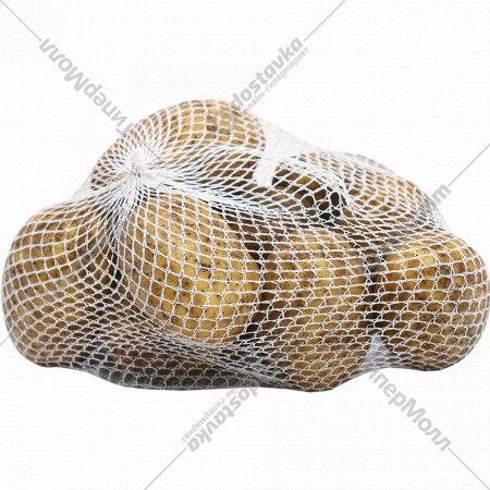 Картофель продовольственный свежий, 1 кг., фасовка 2-2.5 кг