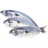 Рыба «Скумбрия атлантическая» мороженая, глазированная, 1 кг, фасовка 1.1-1.3 кг