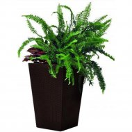 Кашпо «Keter Group» Large Rattan Planter-jrdbrw-castorama