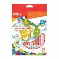 Карандаши цветные акварельные, в картонной упаковке, 36 цветов.