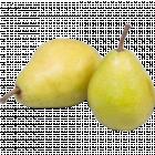 Груша «Лукас» 1 кг., фасовка 0.6-0.8 кг