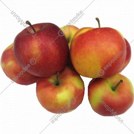 Яблоко свежее «Гала» 1 кг., фасовка 0.9-1.2 кг