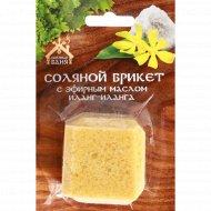 Соляной брикет «Соляная баня» мини с эфирным маслом иланг-илан, 200 г.