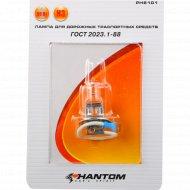 Лампа для дорожных транспортных средств PH6101.