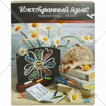 Тетрадь «Тайная жизнь ежей-Иностранный язык» 48 листов, А5.