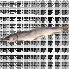 Щука потрошеная сушено-вяленая, 1 кг