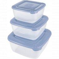 Набор емкостей для хранения пищевых продуктов «Polar» квадратных, 3 шт.