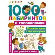 Книга «1000 лабиринтов и головоломок» Малышкина М.В.
