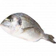 Рыба охлажденная «Дорадо» с головой, непотрошеная, 1 кг., фасовка 0.35-0.45 кг