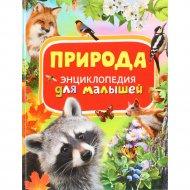 Энциклопедия для малышей «Природа».