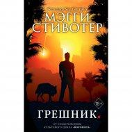 Книга «Грешник» Стивотер М.