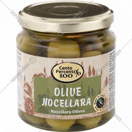 Оливки ночеллара «Cento Percento» 300 г
