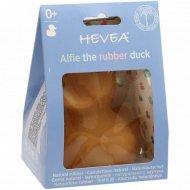Игрушка для ванной «Hevea Alfie».