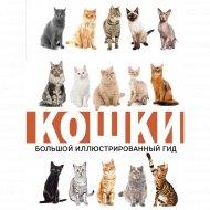 Книга «Кошки».