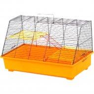 Клетка для грызунов «Щурик» 570x300x340 мм.