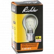 Лампа накаливания «Richter» 40 Вт.