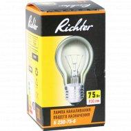 Лампа накаливания «Richter» 75 Вт.