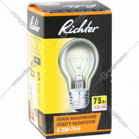 Лампа накаливания декоративная «Richter» Б 230-75-6 75W.