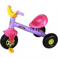 Велосипед «Альтернатива» Ветерок, М5250, Фиолетовый