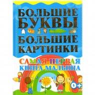 Книга «Самая первая книга малыша».