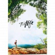 Тетрадь «Это жизнь!» клетка, 80 листов, А4