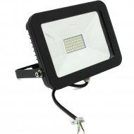 Прожектор «Smartbuy» 50W, 4100K, IP65, LED.