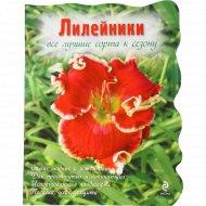 Книга «Лилейники» А. Рубинина.