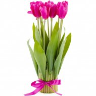 Декоративный букет «Home&You» Tulip, 50167-ROZ-STRO-H0035