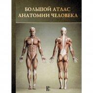 Книга «Большой атлас анатомии человека».