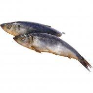 Сельдь «Матье» атлантическая, средняя, жирная, малосоленая, 1 кг., фасовка 0.2-0.3 кг